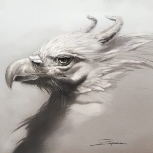 Griffin Study By Kaitlund Zupanic