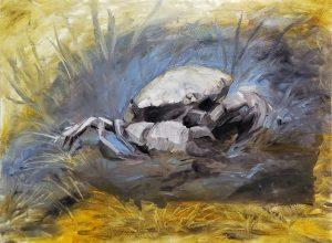 Fossilized Crab by Kaitlund Zupanic